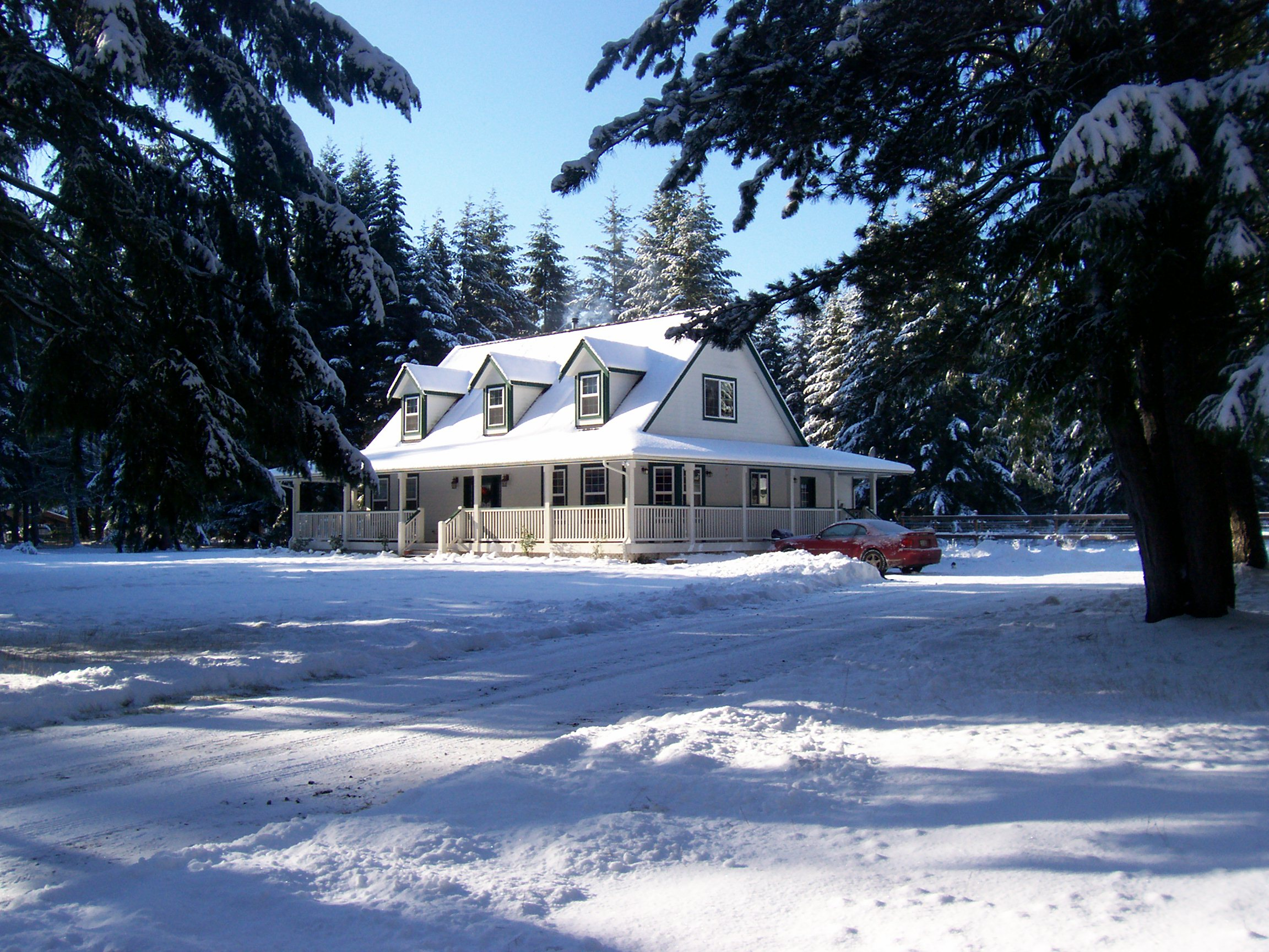 Winter Snow - 2008